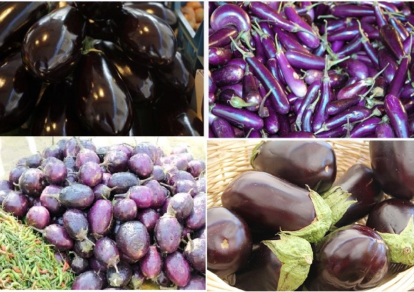 types of eggplants from different countries