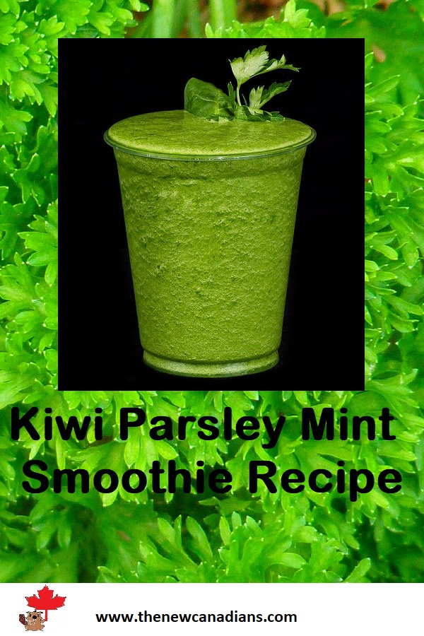 Start with morning with this powerful parsley smoothie